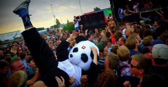 Party-pandaen taler ud: »Folk får rimelig optur over at feste med fullsize dyr«