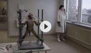 Trailer: Svensk mesterinstruktør afslutter sin trilogi
