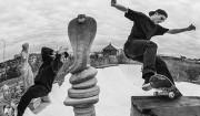 Polar Skate Co. og Carhartt WIP fejrer collab