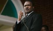 Hollywood-instruktører reagerer på 'Selma's Oscar-forbigåelser: »Fuck dem!«