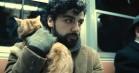 Dyreplageri: Når filmheltene myrder de nuttede kæledyr – og hvad det betyder