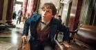 Få første kig på Eddie Redmayne i 'Harry Potter'-filmen 'Fantastic Beasts and Where to Find Them'