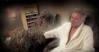 Suicidal Chewbacca reddes af Harrison Ford, Jimmy Kimmel og Adele