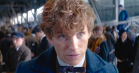 'Harry Potter'-spinoffen 'Fantastic Beasts and Where to Find Them' får sin første lange trailer – se den her