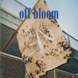 Danske Off Blooms debut-ep er popmusik med huller i cowboybukserne - Love To Hate It