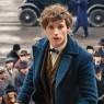 Første billede fra 'Fantastic Beasts'-film er landet – med Jude Law som Dumbledore