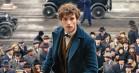 Eddie Redmayne forsvarer et overset Hogwarts-hus op til 'Fantastiske Skabninger...'-premieren