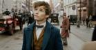 'Fantastiske skabninger og hvor de findes': Harry Potter-spinoff er både mørk og magisk