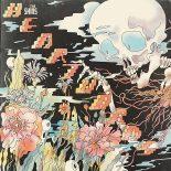 The Shins' første album i fem år er mere fremadskuende visionært end retrospektivt dvælende - Heartworms