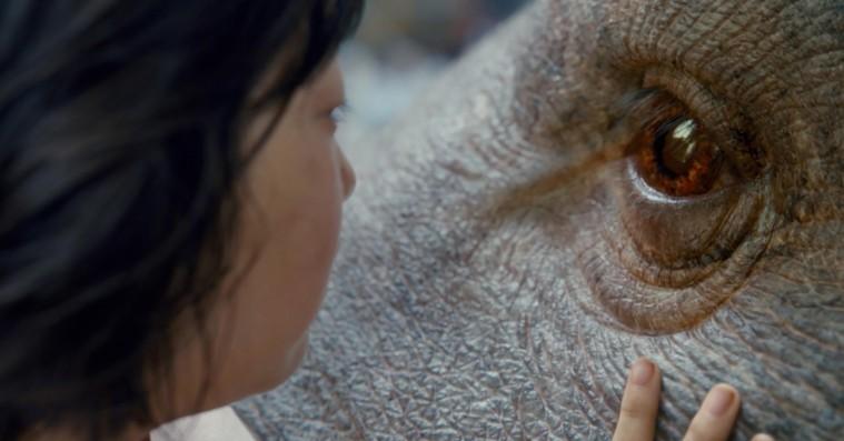 Netflix' supersvin vil få dig til at grine, græde og blive vegetar