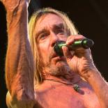 Haven Festival: Iggy Pop lod sig ikke pensionere