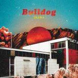 Soleima undersøger tidens poptrends, men burde flippe lidt mere ud - Bulldog