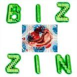 Bisse lader eksperimenterne styre sangskrivningen på 'Bizzin' - Bizzin