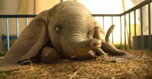 Tim Burtons live-action remake af 'Dumbo' ser hjerteskærende ud: Se den første fulde trailer