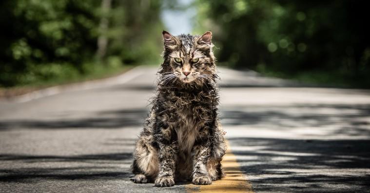 'Pet Sematary': Rørende gys med frygtindgydende kat er helt i Stephen Kings ånd