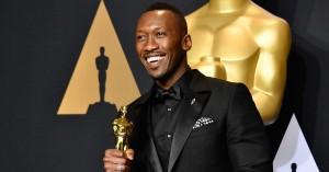 De vinder Oscar på søndag: Vores endelige bud i samtlige 24 kategorier