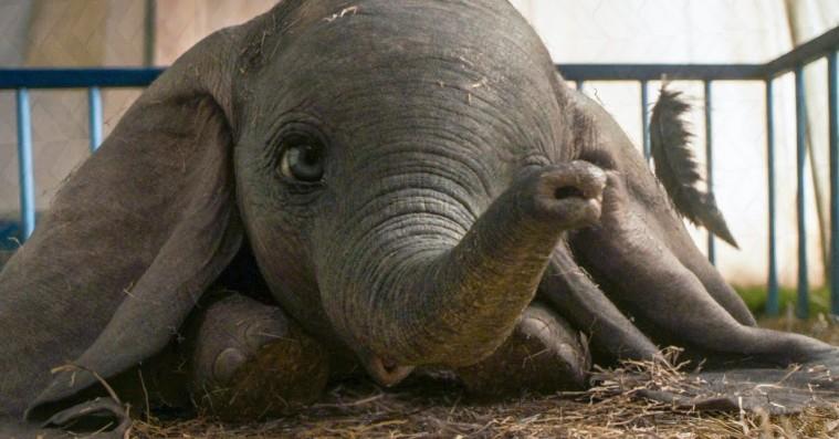 'Dumbo': Tim Burtons babyelefant smelter dit hjerte i åndeløst flot Disney-filmatisering