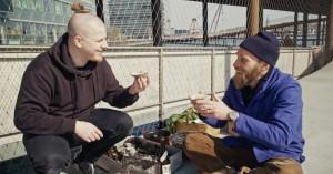 Østers og lånehøns: Få kokkenes insidertips til byens madmuligheder