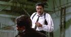 Michael Madsen blev tilbudt rollen som Vincent Vega i 'Pulp Fiction'