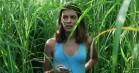 'In the Tall Grass': Netflix-horror farer vild i krattet