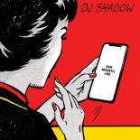DJ Shadows ambitiøse dobbeltalbum begynder først at fungere halvvejs igennem - Our Pathetic Age