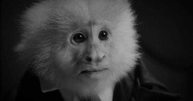David Lynch udgiver mystisk kortfilm på Netflix