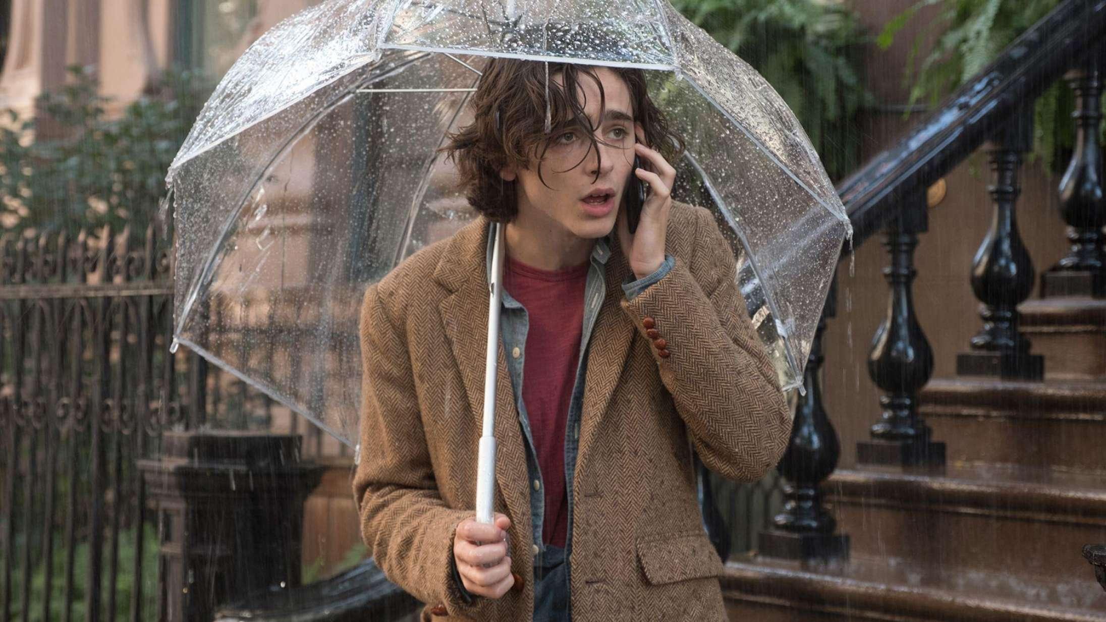 'A Rainy Day in New York': Woody Allens replikker lyder skrupforkerte i Timothée Chalamets mund