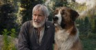 'The Call of the Wild' : Harrison Ford & hund er en underholdende vildmarksfortælling