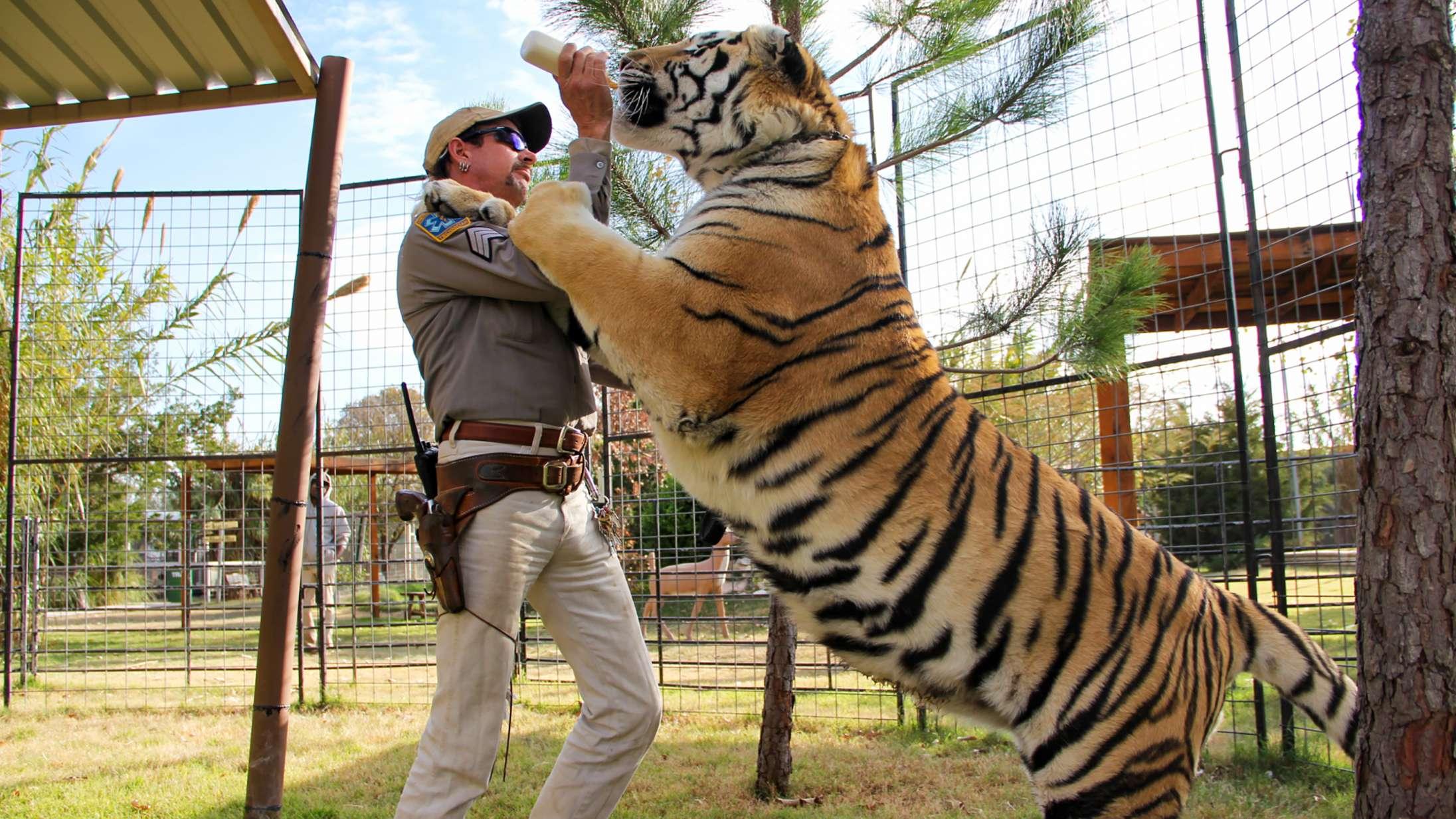 Er 'Tiger King' mere end et freakshow?
