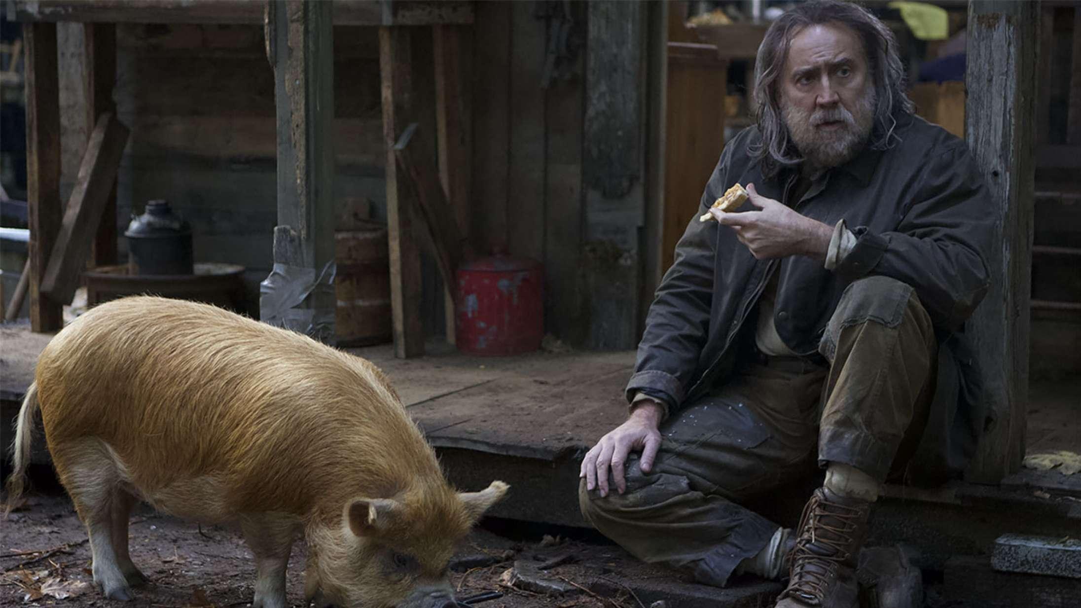 Nicolas Cage overrasket over gode anmeldelser af ny film – hylder sine katte
